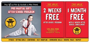 Martial Arts Mailer